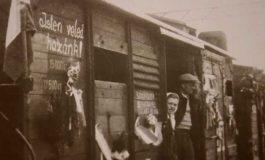 Rundtischgespräch über die Vertreibung der Ungarndeutschen
